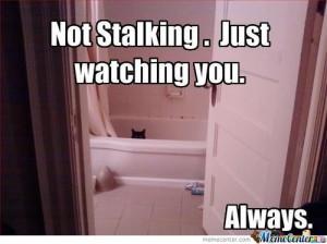 No-Stalking_o_134514